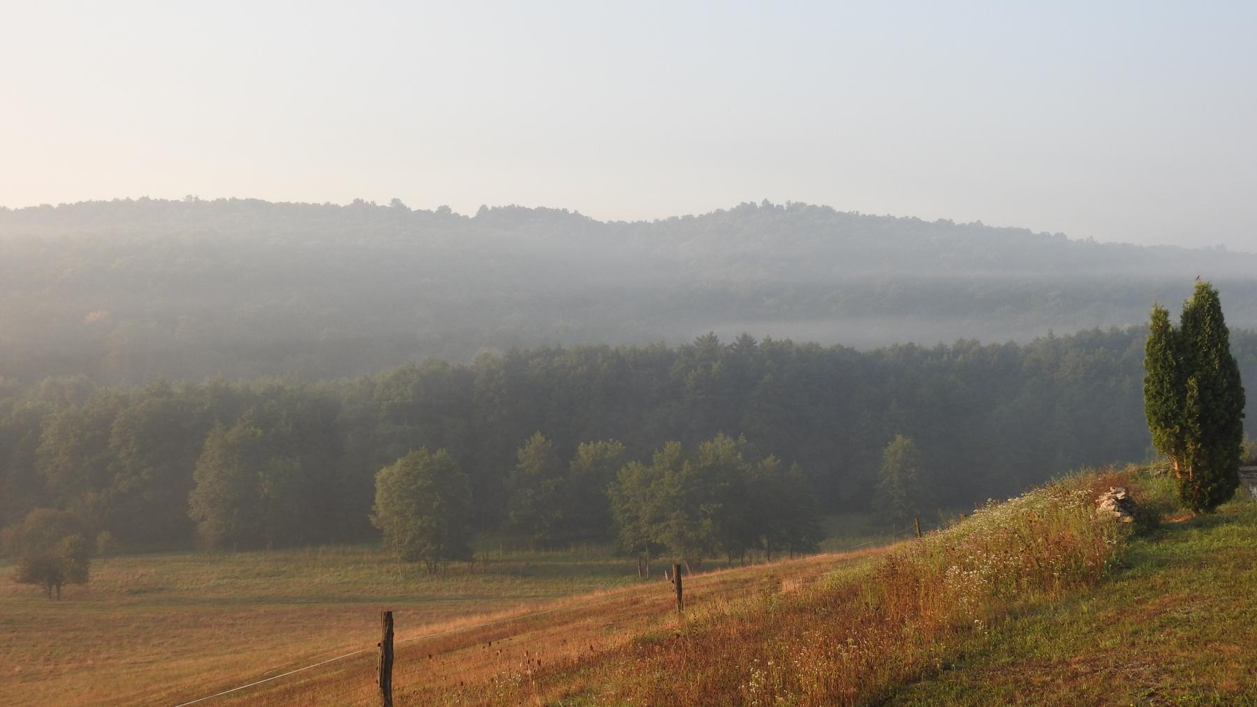 Ködös-reggel-012
