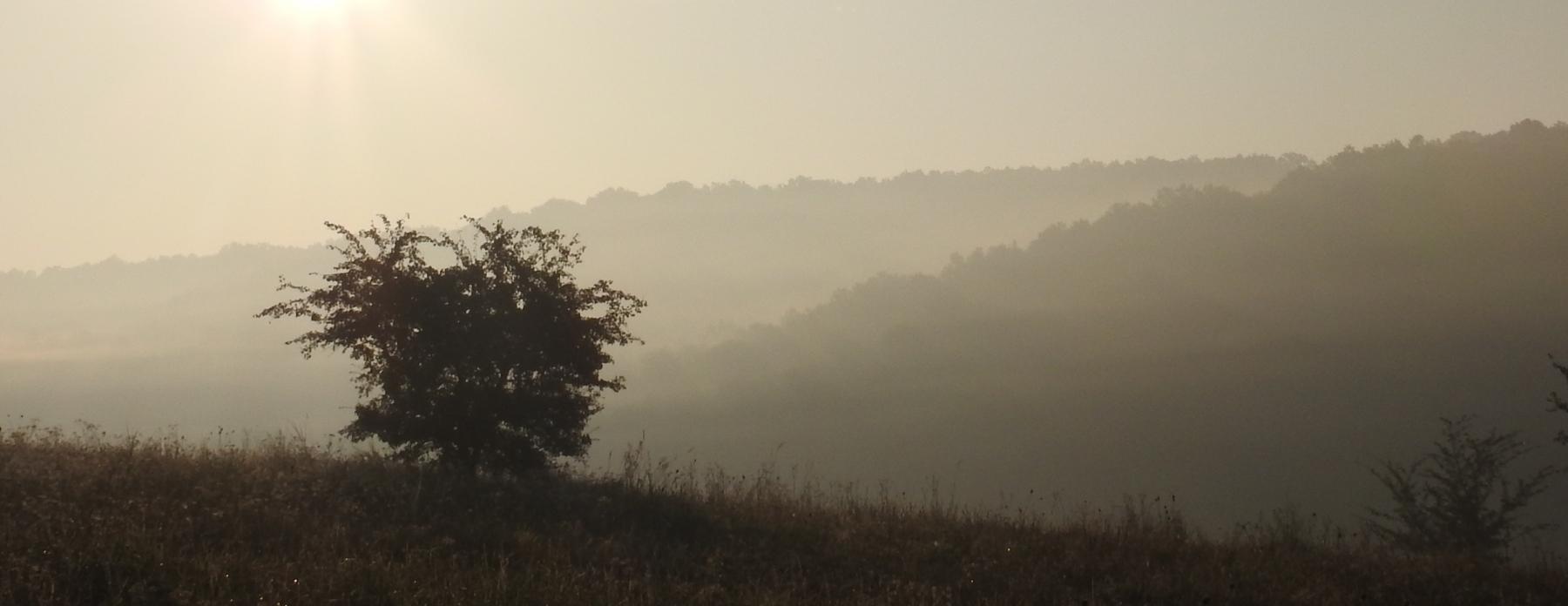 Ködös-reggel-018