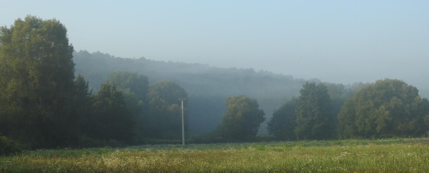 Ködös-reggel-030