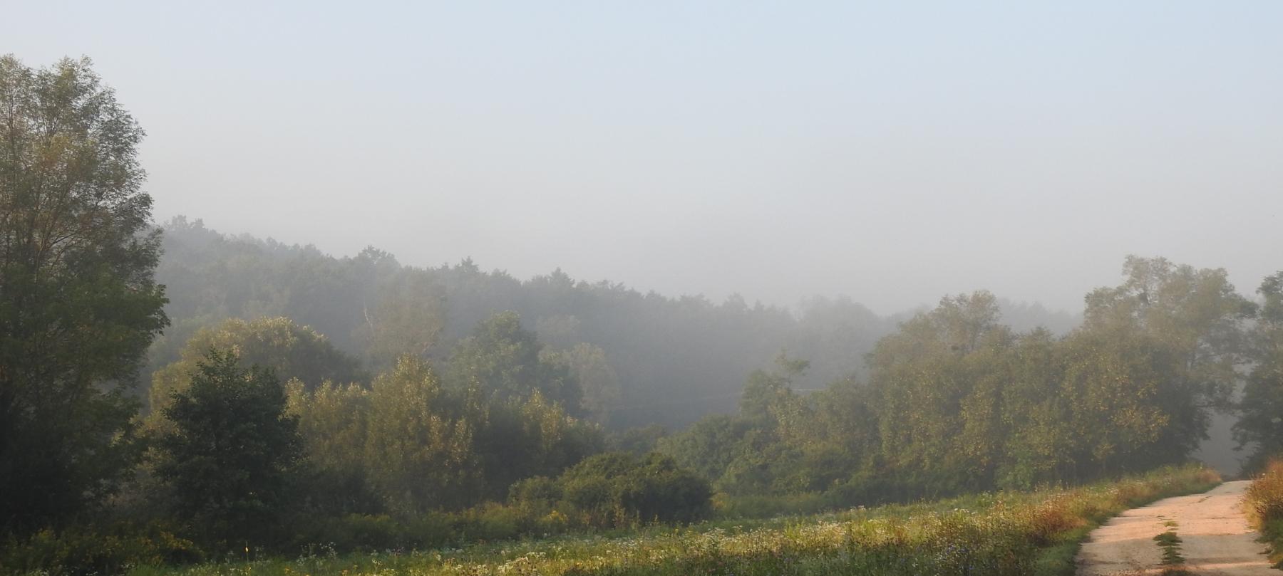 Ködös-reggel-040