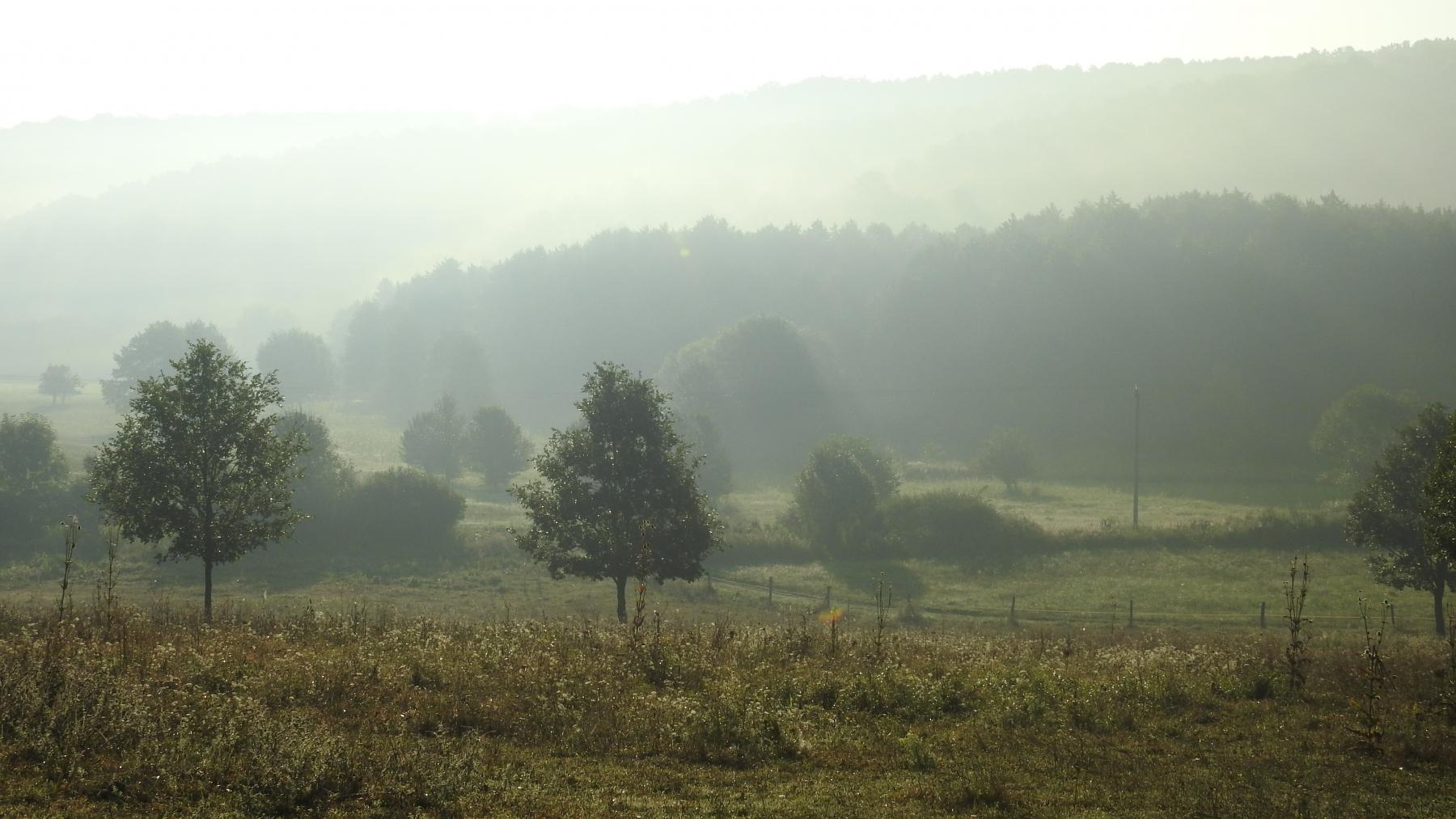 Ködös-reggel-110