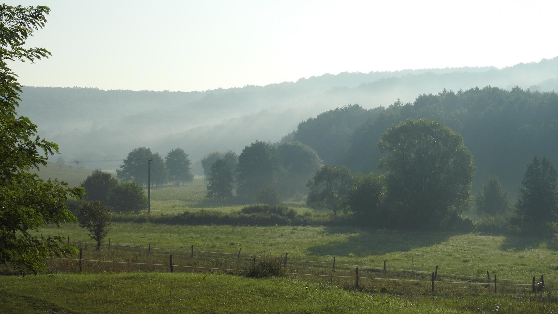 Ködös-reggel-201