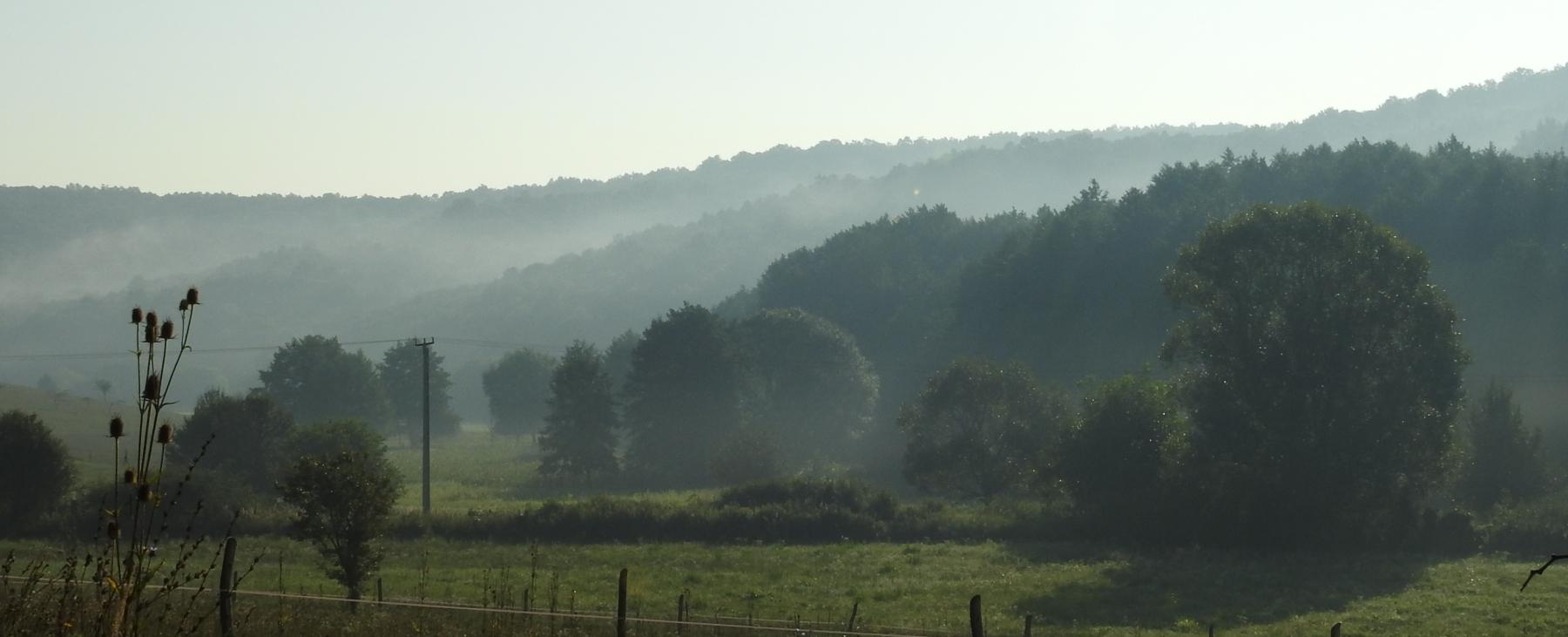 Ködös-reggel-206
